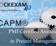 Certified Associate in Project Management CAPM