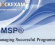 Managing Successful Programmes (MSP)